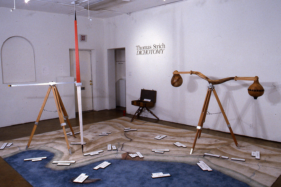 Dichotomy, an installation by Thomas Strich